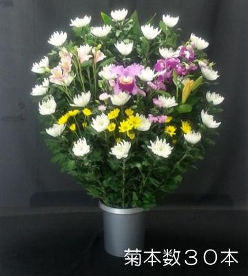 生花 菊本数30本