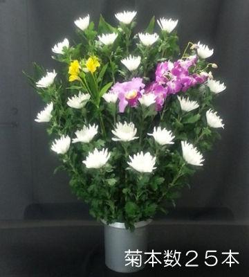 生花 菊本数25本
